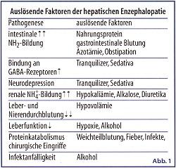 Promille Symptome